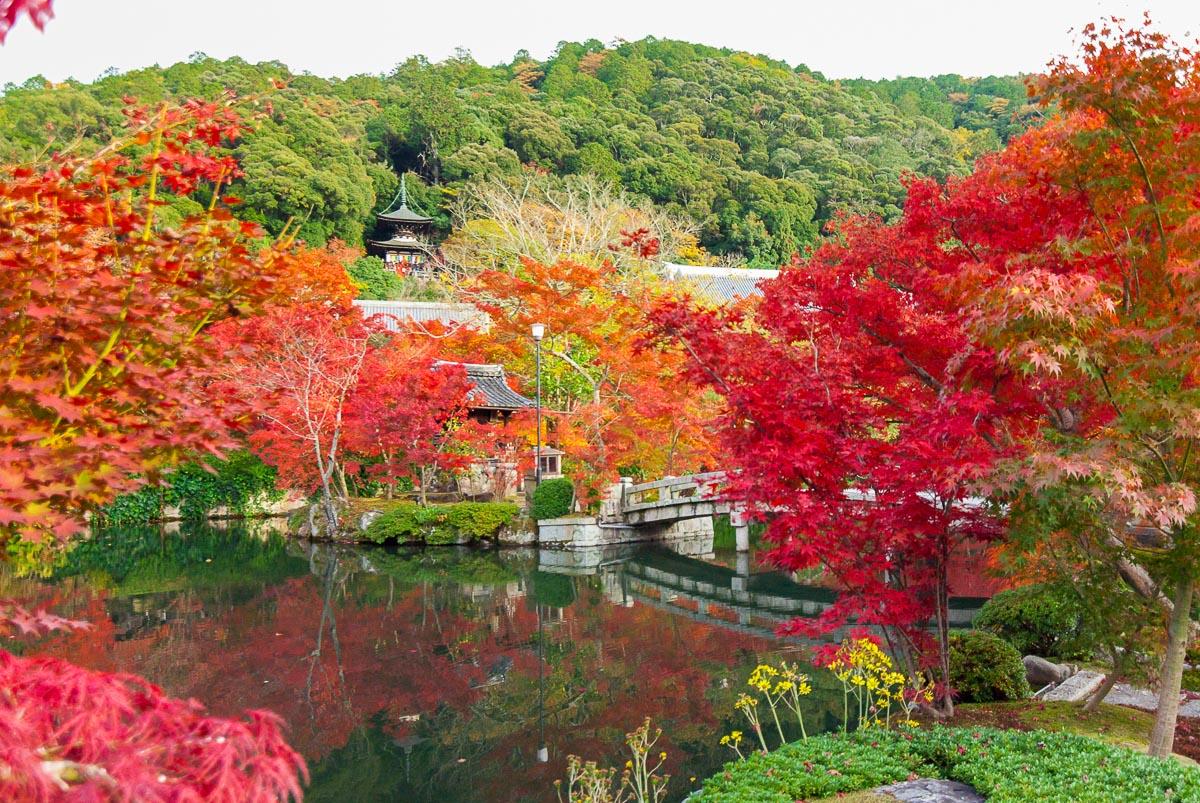 Eikan-dō (Kyōto) - Vue sur le jardin du temple