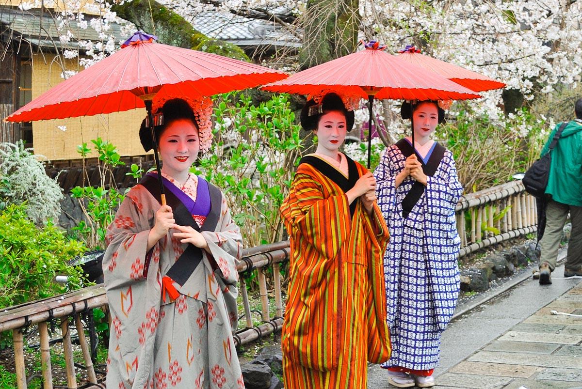 Shirakawa (Kyōto) - Maiko (apprenties geisha)