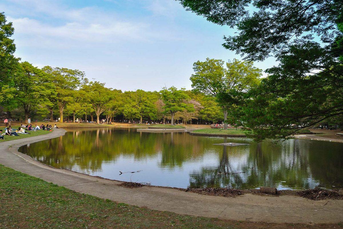 Yoyogi Kōen - Vue sur le parc